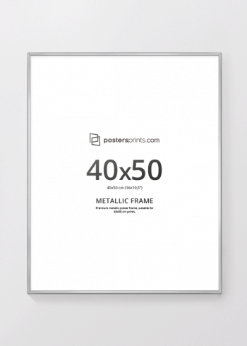 SØLVRAMME, 40x50